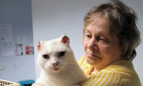 Maureen and her cat Bobby, who needed to get his ears removed due to cancerous tissue
