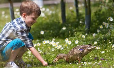 Wildfowl & Wetlands Trust aims to inspire a love of nature in young people and adults alike
