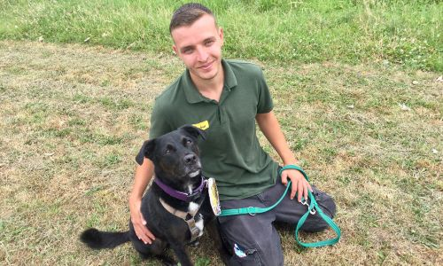 Canine Carer Ryan with one of the thousands of dogs our players have supported