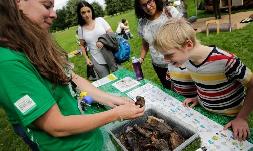 The Royal Parks is committed to educating children and adults about nature