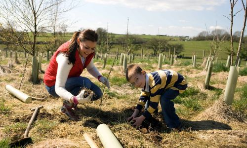 Yorkshire Dales Millennium Trust launched a campaign to plant 100,000 new trees in the Yorkshire Dales