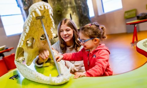 A young visitor exploring the wonders of the natural world with National Museums Scotland