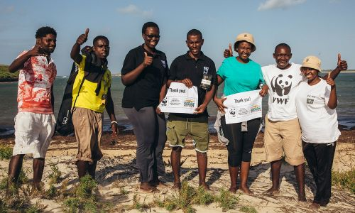 Since 2010, our players have helped WWF-UK make real progress in wildlife conservation and climate change action